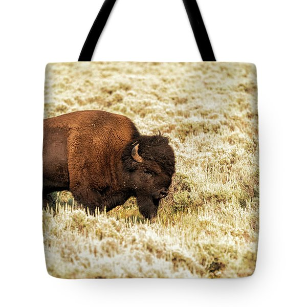 Tote Bag featuring the photograph Roam Free by Dheeraj Mutha