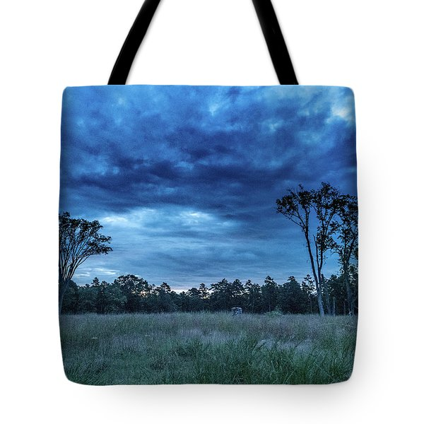 Tote Bag featuring the photograph Friendship Blue Hour Sunrise by Louis Dallara