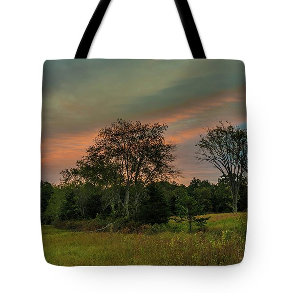 Tote Bag featuring the photograph Pine Lands In Friendship Sunrise by Louis Dallara