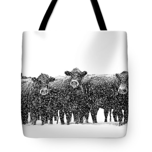 Frosty Faces Black Angus Cows Montana Tote Bag