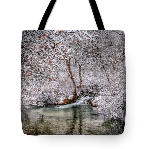 Frosty Pond Tote Bag