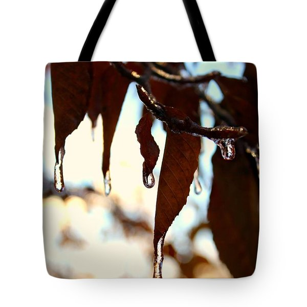 Tote Bag featuring the photograph Frozen Autumn  by Candice Trimble