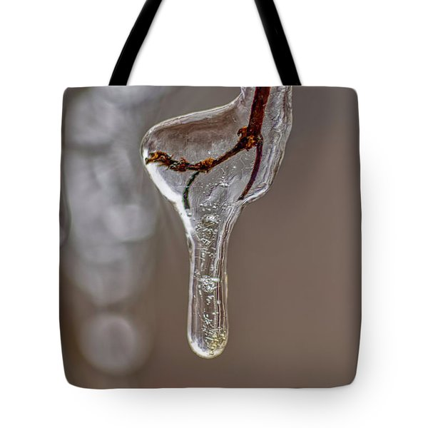 Tote Bag featuring the photograph Frozen-in-time by Meta Gatschenberger