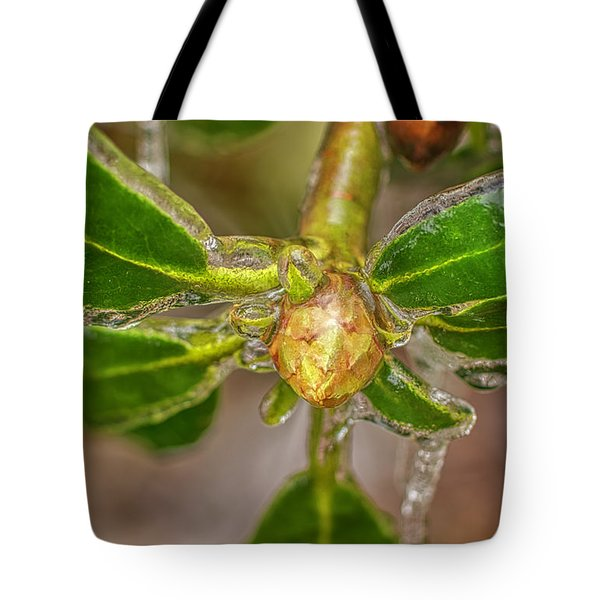 Tote Bag featuring the photograph Frozen Leaves by Meta Gatschenberger