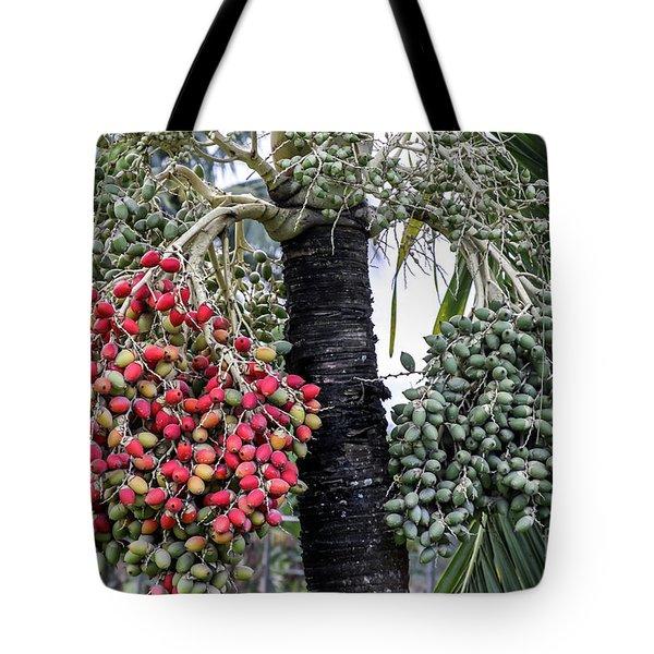 Fruity Palm Tree  Tote Bag