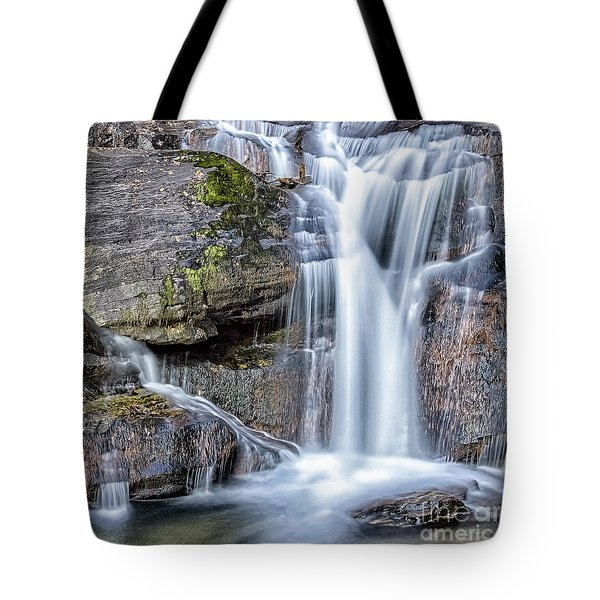 Tote Bag featuring the photograph Full Of Treasures by Bernd Laeschke