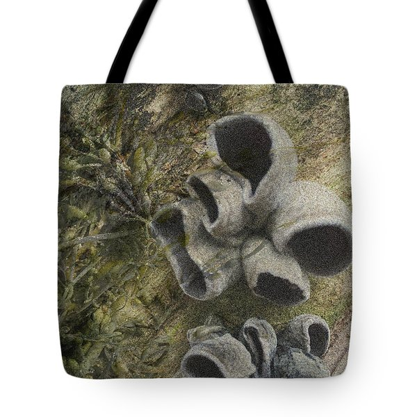 Fungi And Algae Tote Bag