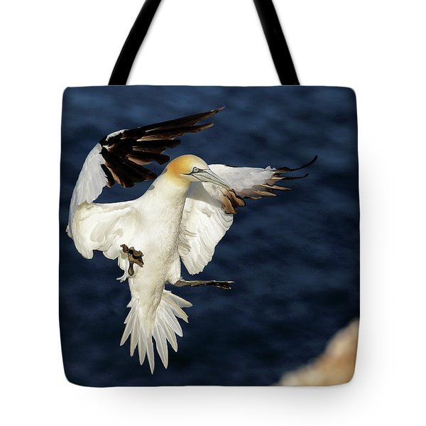 Gannet Landing Troup-head Tote Bag