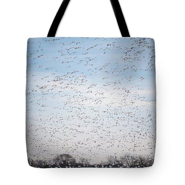 Geese In The Flyway Tote Bag
