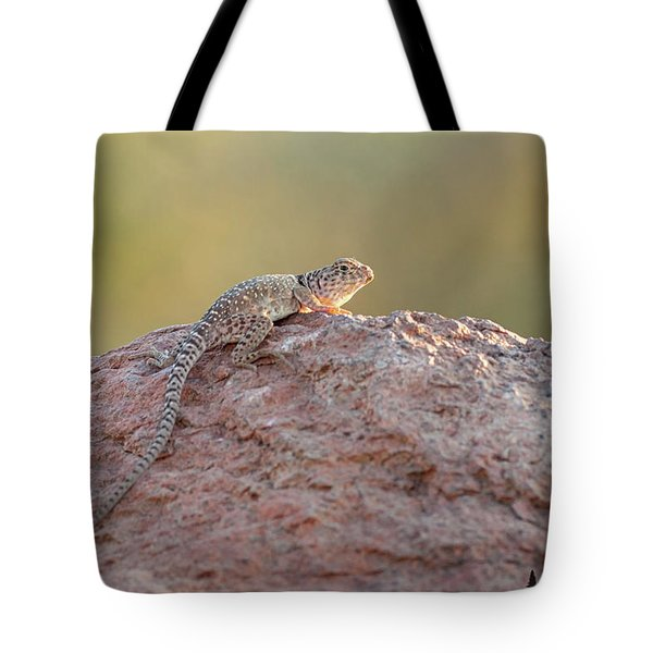 Getting Some Sun Tote Bag
