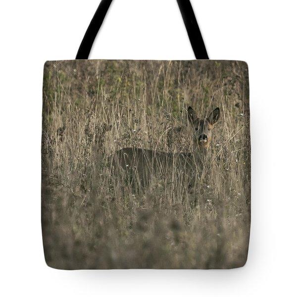 Ghosts In The Grass Roe Deer Tote Bag