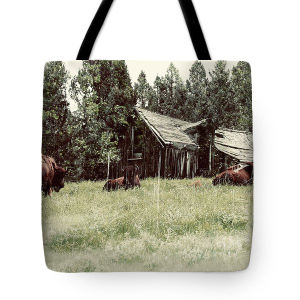 Ghosts Of The Plains Tote Bag