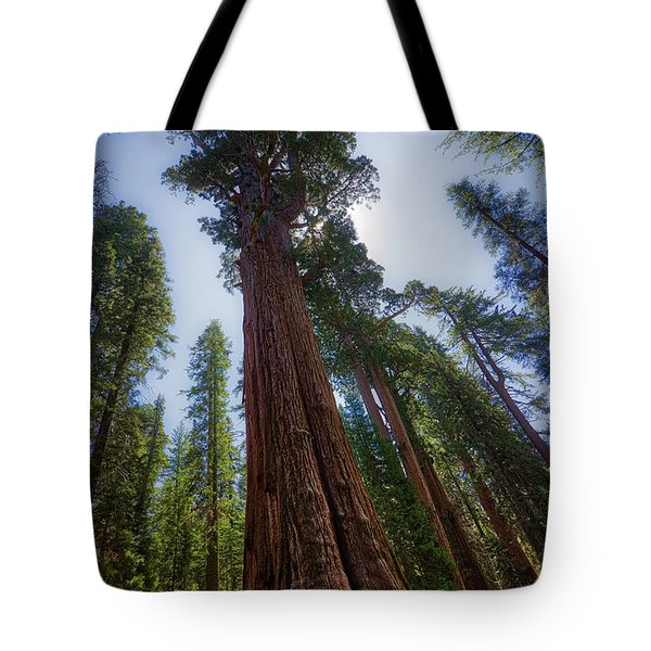 Giant Sequoia Tree Tote Bag