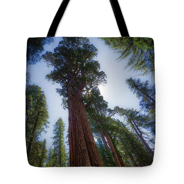 Tote Bag featuring the photograph Giant Sequoia Tree by Andy Konieczny