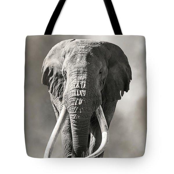 Giant Tusked Bull Elephant In Amboseli, Kenya Tote Bag