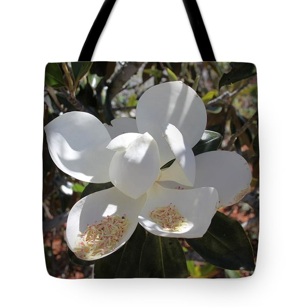 Gigantic White Magnolia Blossoms Blowing In The Wind Tote Bag