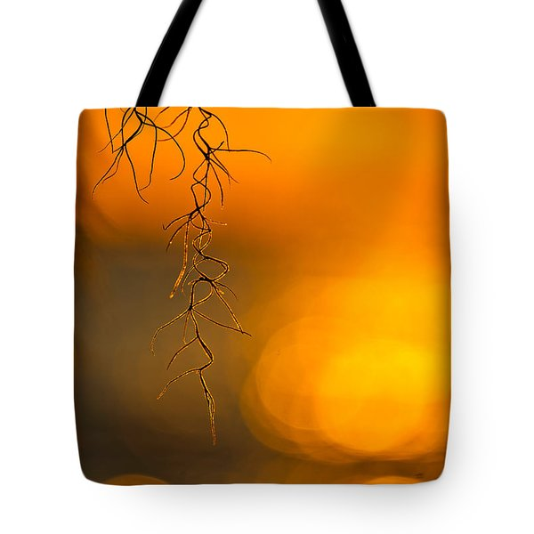 Gilded Moss Tote Bag