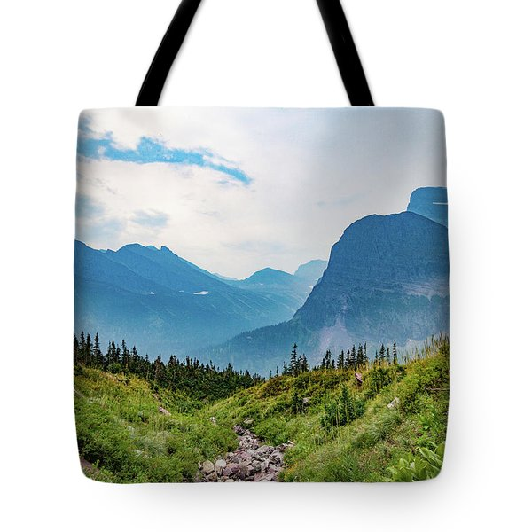 Tote Bag featuring the photograph Glacier Canyon Vista by Lon Dittrick