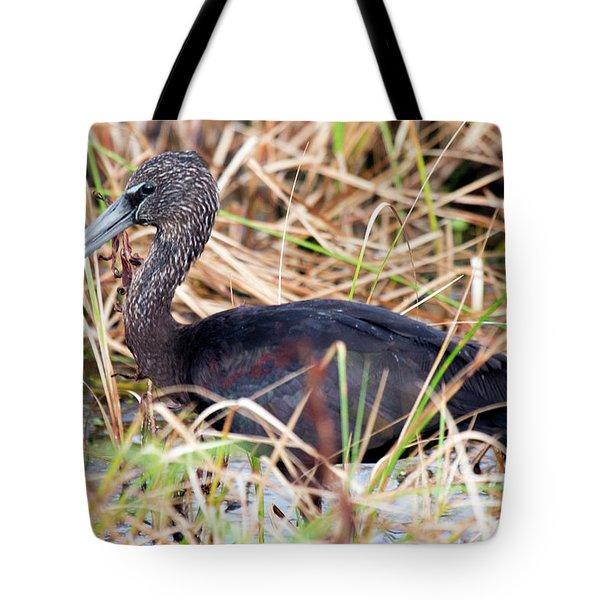 Glossy Ibis 123015 Tote Bag