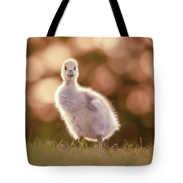 Glosling - The Glowing Gosling Tote Bag