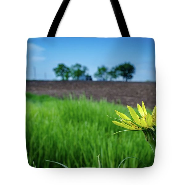 Tote Bag featuring the photograph Goat's Beard On Nelson Farm II by Jeff Phillippi