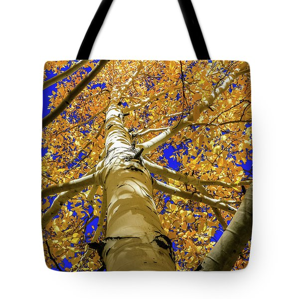 Golden Aspens In Grand Canyon Tote Bag