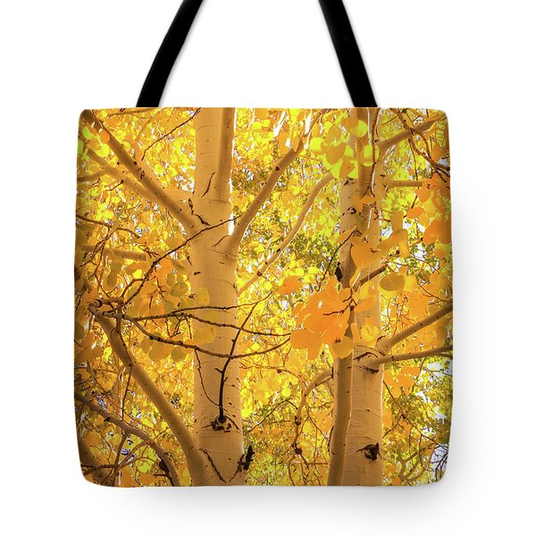 Golden Aspens In Grand Canyon, Vertical Tote Bag
