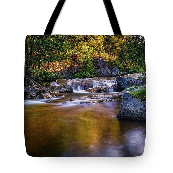 Golden Calm Tote Bag