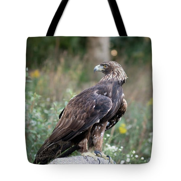 Golden Eagle On Rock 92515 Tote Bag