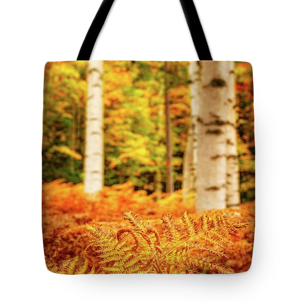 Golden Ferns In The Birch Glade Tote Bag