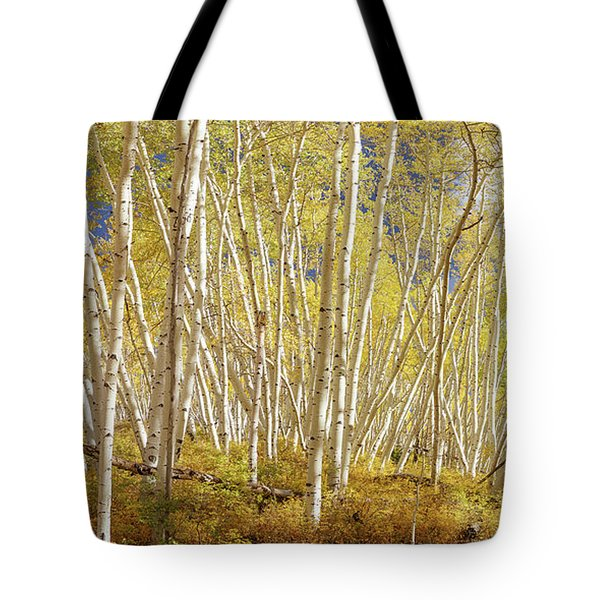 Tote Bag featuring the photograph Golden Forest Fantasy by James BO Insogna