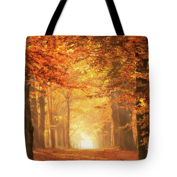 Tote Bag featuring the photograph Golden Forest In Fall Season by IPics Photography
