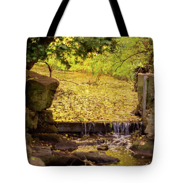 Tote Bag featuring the photograph Golden Leaf River by Scott Lyons