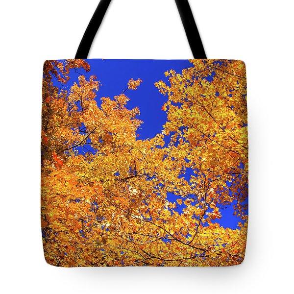 Golden Oaks Tote Bag