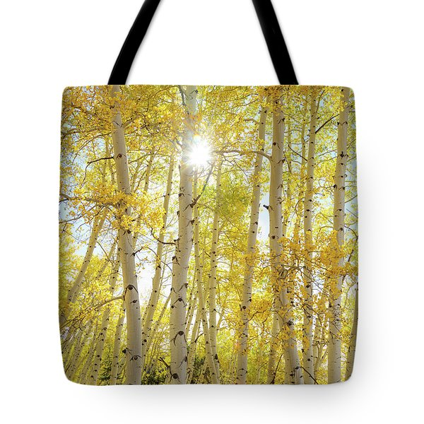 Golden Sunshine On An Autumn Day Tote Bag