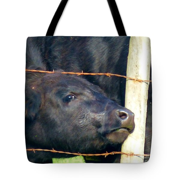 Tote Bag featuring the photograph Good Morning by Rosanne Licciardi
