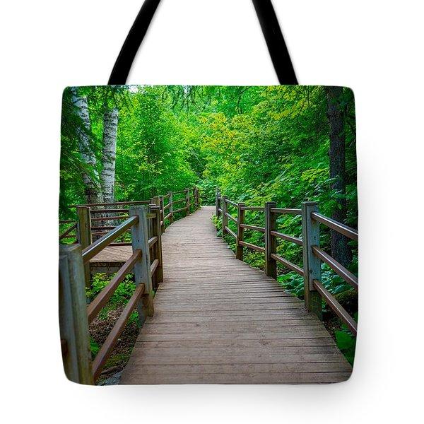 Gooseberry River Trail Tote Bag