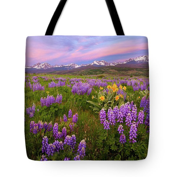 Tote Bag featuring the photograph Gore Range Sunrise by Aaron Spong