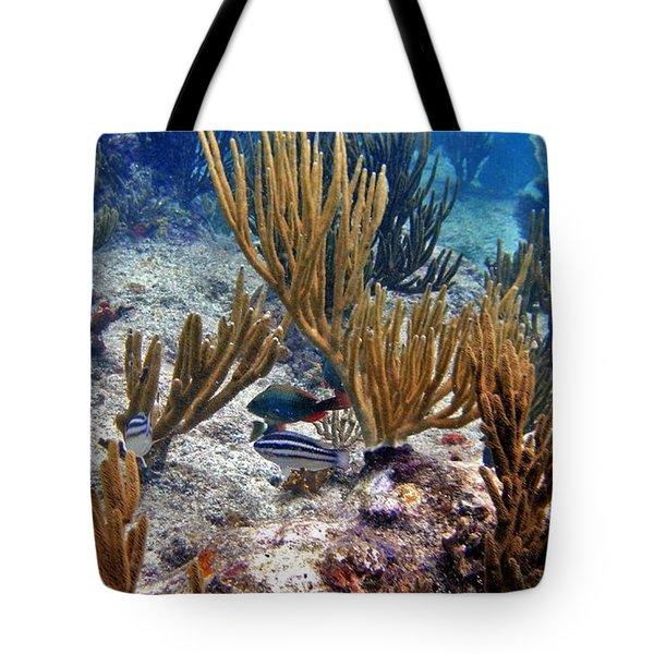 Gorgonian Parrotfish Tote Bag