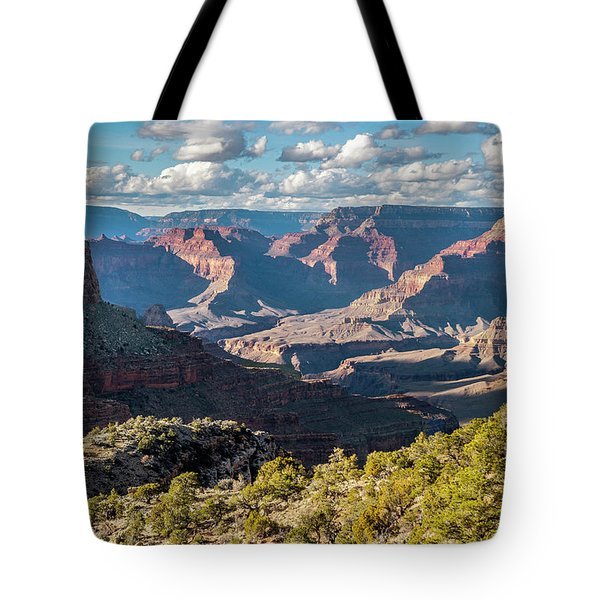 Tote Bag featuring the photograph Grand Canyon Afternoon  by Matthew Irvin