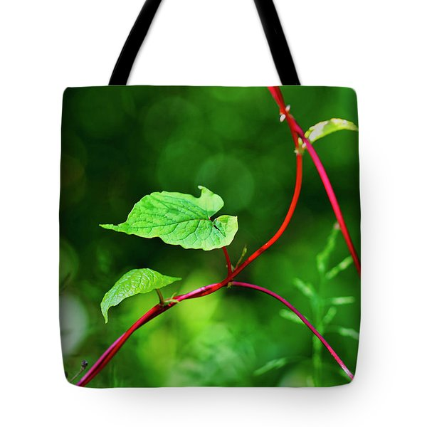 Tote Bag featuring the photograph Grape Vine by Meta Gatschenberger