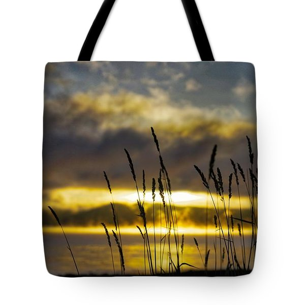 Grassy Shoreline Sunrise Tote Bag