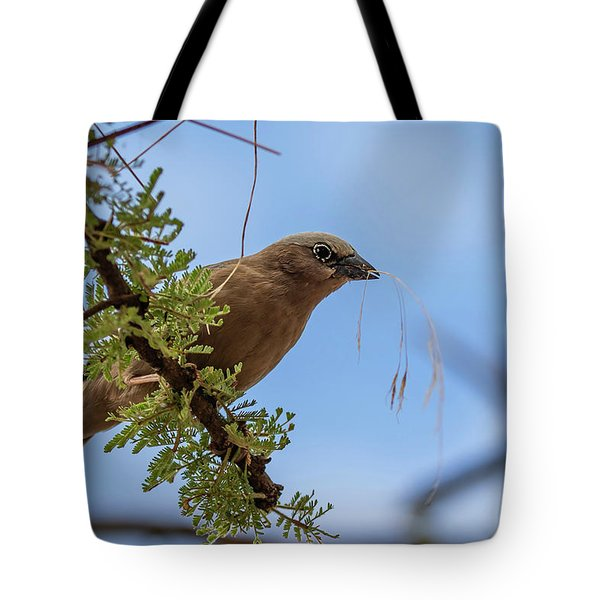 Tote Bag featuring the photograph Gray-headed Social Weaver by Thomas Kallmeyer