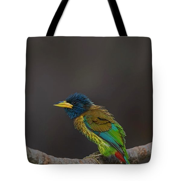 Great Barbet Tote Bag