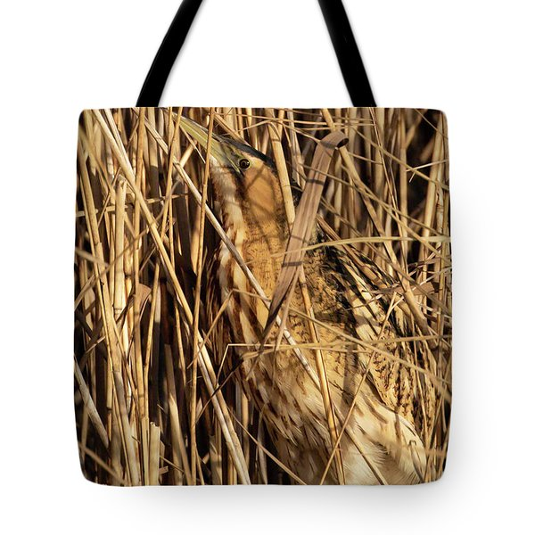 Tote Bag featuring the photograph Great Bittern by Thomas Kallmeyer