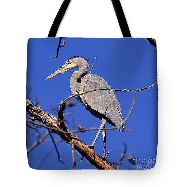 Great Blue Heron Strikes A Pose Tote Bag
