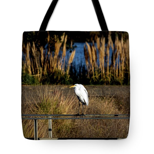 Great Egret Posing By Golden Pampas Grass Tote Bag