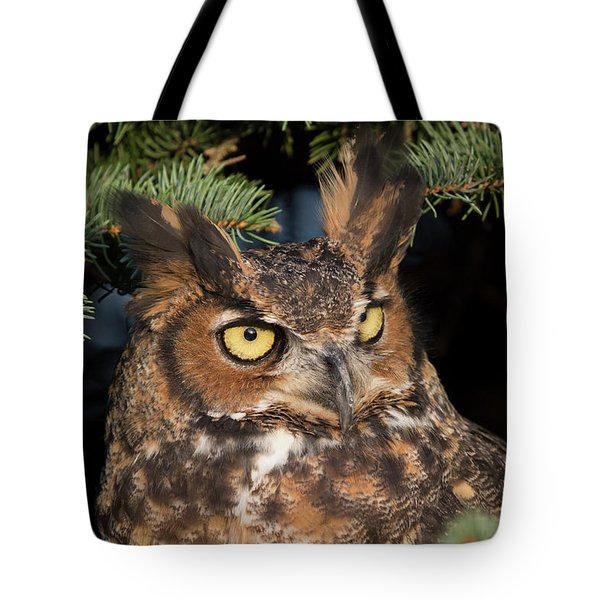 Great Horned Owl 10181802 Tote Bag
