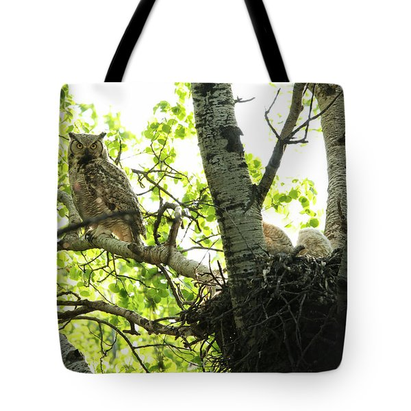 Great Horned Owl And Babies Tote Bag