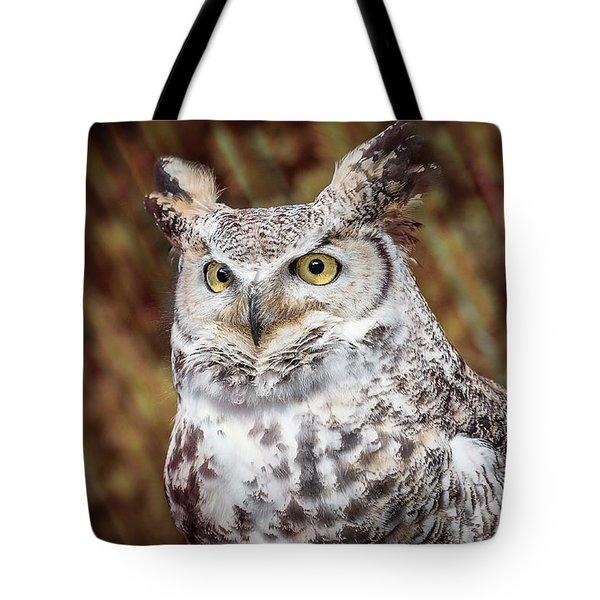 Great Horned Owl Portrait Tote Bag